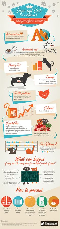 Dogs and Cats are Different and Require Different Nutrients #infographic #Pets #Dogs #Cats