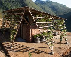 H&P architects encircles vietnamese toilet block with structural bamboo