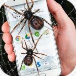 """Android App: How funny it will be when any one will found like real spiders moving on around of your smart phone. """"Spider in phone funny joke"""" is such a funny app which will give you that pleasure. Install the funny app to your smart phone and see the magic."""