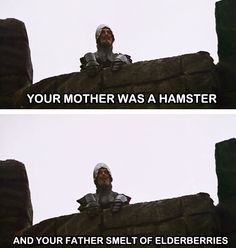 "Monty Python and the Holy Grail  ""Your mother was a hamster and your father smelled of elderberries."""