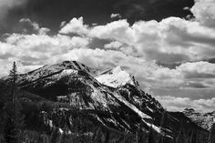 Yellowstone National Park, 2012 by Gene Dailey