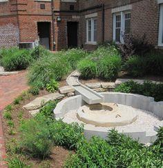 Grassroots rain garden 01 Grassroots Rain Gardens