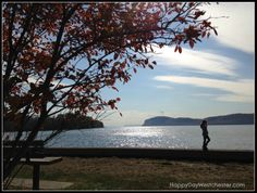 Croton Point Park, Croton-on-Hudson, Westchester, NY Hudson River, Hudson Valley, Westchester County New York, Wonderful Places, Beautiful Places, Have A Happy Day, Storyboard, Dates, Things To Do