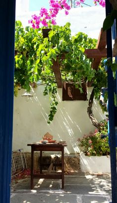 Greek courtyard in Rhodes, Lahania