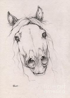 Spooked Horse 2015 12 08 is a drawing by Angel Tarantella