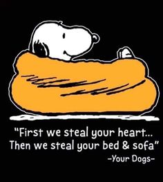 Snoopy Love, Charlie Brown And Snoopy, Snoopy And Woodstock, Animal Quotes, Dog Quotes, Cute Quotes, Sassy Quotes, I Love Dogs, Puppy Love