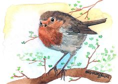 ACEO Limited Edition  First robin of spring in by annalee377