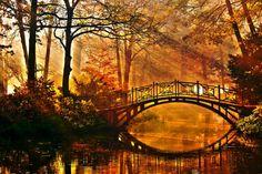 Où admirer les plus beaux feuillages d'automne à travers le monde?