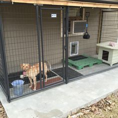 Dog House Kennel-Makes the dog house connected to the doggie door so people couldn't get inside through the doggie door Outdoor Dog Area, Backyard Dog Area, Dog Cage Outdoor, Dog Kennel Designs, Diy Dog Kennel, Kennel Ideas, Dog Kennels, Dog Kennel Inside, Diy Dog Run