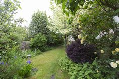 4 Beds House For Sale in Brodrick Road, Wandsworth Common, SW17