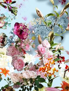 Surreal Flora from Isabelle Menin Arte Floral, Summer Decoration, Happy Birthday Flower, Happy Birthday Month, Birthday Wishes, Happy B Day, Flower Art, Beautiful Flowers, Beautiful Gorgeous