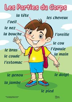 Are you learning French? The parts of the body are important French vocabulary words for beginners and advanced speakers alike! French Language Lessons, French Language Learning, French Lessons, Foreign Language, Basic French Words, French Phrases, French Flashcards, French Worksheets, French Teaching Resources