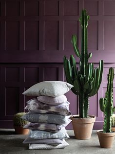Stroheim's Ambiance collection - Whisper color book. #Stroheim #Ambiance #Whisper