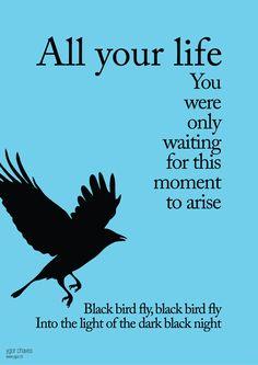 Blackbird - #Beatles #Songs