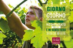 #iGermogli e #SoldialeItaliano