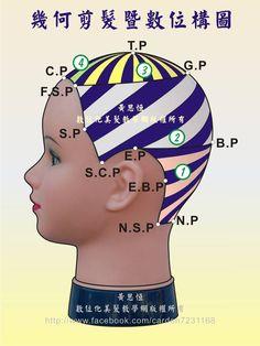 黃思恒幾何剪髮數位構圖--髮片劃分系列,幾何剪髮完整裁剪設計區,結合定點放射髮片、逆斜髮片、定點放射髮片,進行另一款創意剪髮之數位構圖頂面-右側呈現