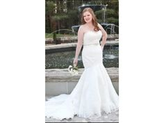 Inxpensive plus size wedding gowns. Strapless bridal dresses for plus size brides.  Designer plus size wedding gowns.  Get custom designs (or have a replicas made for less) at www.dariuscordell.com