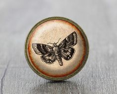 Butterfly  Vintage Antique Bronze Dresser Knobs by jade4wood, $6.20
