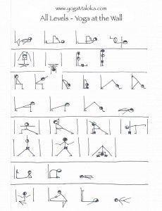 yin yoga sequence  essential yin  yoga maloka