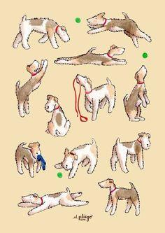 Foxies having fun Art Print by m.pliego - X-Small Fox Terriers, Perro Fox Terrier, Wirehaired Fox Terrier, Welsh Terrier, Wire Fox Terrier, Airedale Terrier, Terrier Dogs, Dog Pictures, Animal Pictures
