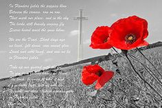 In Flanders Fields is a composite image of a poppy field with a cross and text. In Flanders Fields is a war p. Sunset Love, Flanders Field, Anzac Day, Remembrance Day, Fields, Poppies, Glow, Poem, Blessings