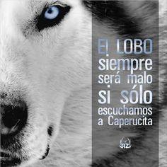 Nadie se atreve a Conocer al Lobo: Nadie se Atreve a Conocer al Lobo!!!