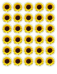 30x-4cm-YELLOW-SUNFLOWER-EDIBLE-FONDANT-WAFER-FAIRY-CUP-CAKE-TOPPERS