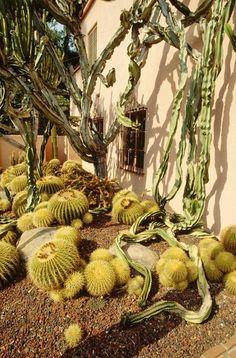 Deep inspiration found at Madame Ganna Walska's Lotusland | Montecito, CA. http://terratrellis.com