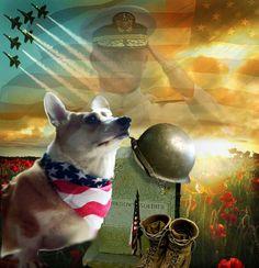 Rambo memorial day Corgi tribute