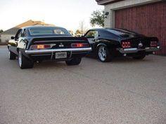 SS or Mustang? let's get this #trending OK Everyone? Please Retweet