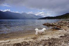 Creston BC, Kootenay lake British Columbia, Mountains, Nature, Travel, Naturaleza, Viajes, Traveling, Natural, Tourism