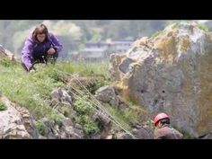 """It takes quite some courage to work with Peregrine falcons! Fieldwork for the study """"Breeding performance and survival in the peregrine falcon Falco peregrin. Peregrine Falcon, Falcons, Youtube, Cards, Hawks, Peregrine, Playing Cards, Youtubers, Maps"""
