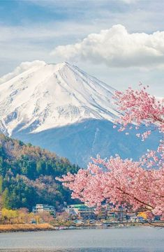 Hanami cherry trees are blooming in Japan. # Japan Fotos - Elvira Bruno - Hanami cherry trees are blooming in Japan. # Japan Fotos Informations About Han - Aesthetic Japan, Travel Aesthetic, Monte Fuji Japon, Landscape Photography, Nature Photography, Photography Puns, Japan Travel Photography, Forensic Photography, Photography Tattoos