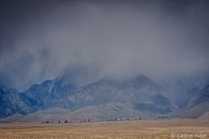 www.karltonhuberphotography.com posted a photo:  Owens Valley - Spring Rain. May 16, 2016. ©Copyright 2017 Karlton Huber Photography - all rights reserved.  This was one of those days where not much was going on I was out in the open and the light was rather harsh so I was spending the mid-day hours scouting some potential new photography locations about 30 minutes north of this scene when I noticed some distant clouds beginning to gather to the south. I explored two new roads and then I was…