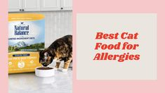 Best Cat Food for Allergies Canned Cat Food, Dry Cat Food, Best Cat Food, Protein Sources, Cool Cats, Grain Free, Allergies, Top, Sources Of Protein