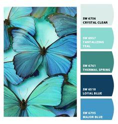 'Shades of Tiffany Blue, Teal, Aqua and Turquoise' board Morpho Bleu, Morpho Azul, Morpho Butterfly, Blue Butterfly, Butterfly Kisses, Butterfly Wings, Purple Butterfly Wallpaper, Teal Wallpaper, Butterfly Template