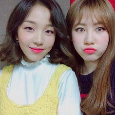 388.5k Followers, 205 Following, 9 Posts - See Instagram photos and videos from 백아연 BAEK A YEON (@ayeoniiiiii)