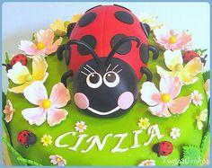 Coccinella fra i fiori / Ladybug with dogwood fl4owers | Flickr - Photo Sharing!
