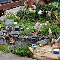 Pond plants can dramatically change the way ponds look and function. Discover which one's may work best for your pond. Large Fairy Garden, Fairy Garden Plants, Garden Whimsy, Fairy Garden Houses, Garden Terrarium, Gnome Garden, Fairy Gardening, Fairies Garden, Container Gardening