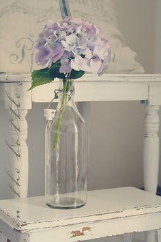 lone hydrangeas in bottle - simple, yet it works!