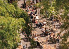 Grote Markt Den Haag - Het gezelligste plein van Nederland met de September, Vavoom, de Zwarte Ruiter, de Boterwaag, de Zéta en de Supermark...