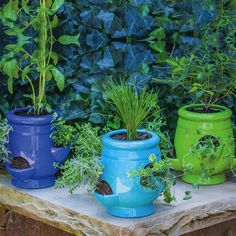 $54 7 1/2h x 5Dia Ceramic mini strawberry jars- aqua & kiwi green for guest bedroom, blue for patio. Showcasing an imaginative design with open balcony details for extra greenery, this innovative planter is a charming addition to your patio or sunroom.