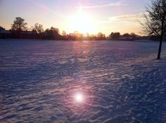 Wintery sunset, Eaton Park. About 3.35pm.