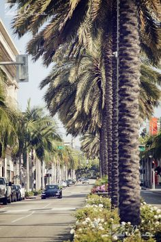 Rodeo Drive, Beverly Hills, California.  Worked on Camden selling shoes and bags.  Fun.