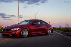Velos Photoshoot v 1.0 | Sakhir Orange BMW M4 on Velos S3 Wheels & Much More