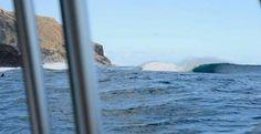 """""""COVER PICTURE"""". Foto _ José V. Glez ISSUE 65 ONLINE free. Las Afortunadas son algo más que 8 islas... Unidas por su natura nos hace estar dentro de la llamada zona privilegio del Planeta azul. Un día decidimos ir de turismo y la sorpresa no fue el Sol y las curvas de sus escarpadas montañas... Stephan De Torres en el canal espera su turno, Jonathan Glez se hace con algunas cerca de la orilla, Luis Díaz nos relata de como su vida le trata y el capitán Johnny Dámaso nos dice"""