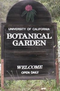 The Garden is first on the bucket list for Cal grad students.