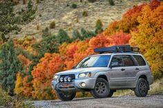Subaru Forester Lifted, Lifted Subaru, Subaru Wrx, Nissan Xtrail, Nissan Navara, Nissan Patrol, Suzuki Vitara 4x4, Nissan Terrano, Montero Sport