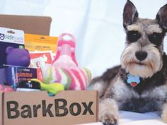 Bark Box - dogs toys - Monthly Subscription Boxes - Best Subscription Boxes for Women - Redbook