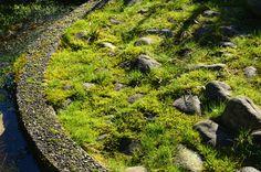 Holland, Groningen, botanical garden Hortus Haren. Chinese garden. Holland, Sidewalk, Outdoor Decor, The Nederlands, Side Walkway, The Netherlands, Walkway, Netherlands, Walkways